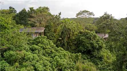 Turaco Treetops Panoramablick