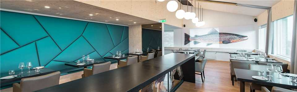 Ion Advanture Hotel Restaurant