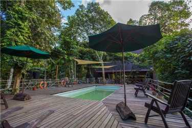 Sukau Rainforest Lodge Pool