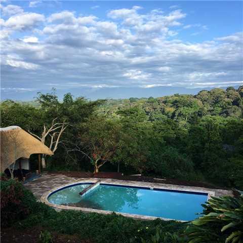 Turaco Treetops Pool