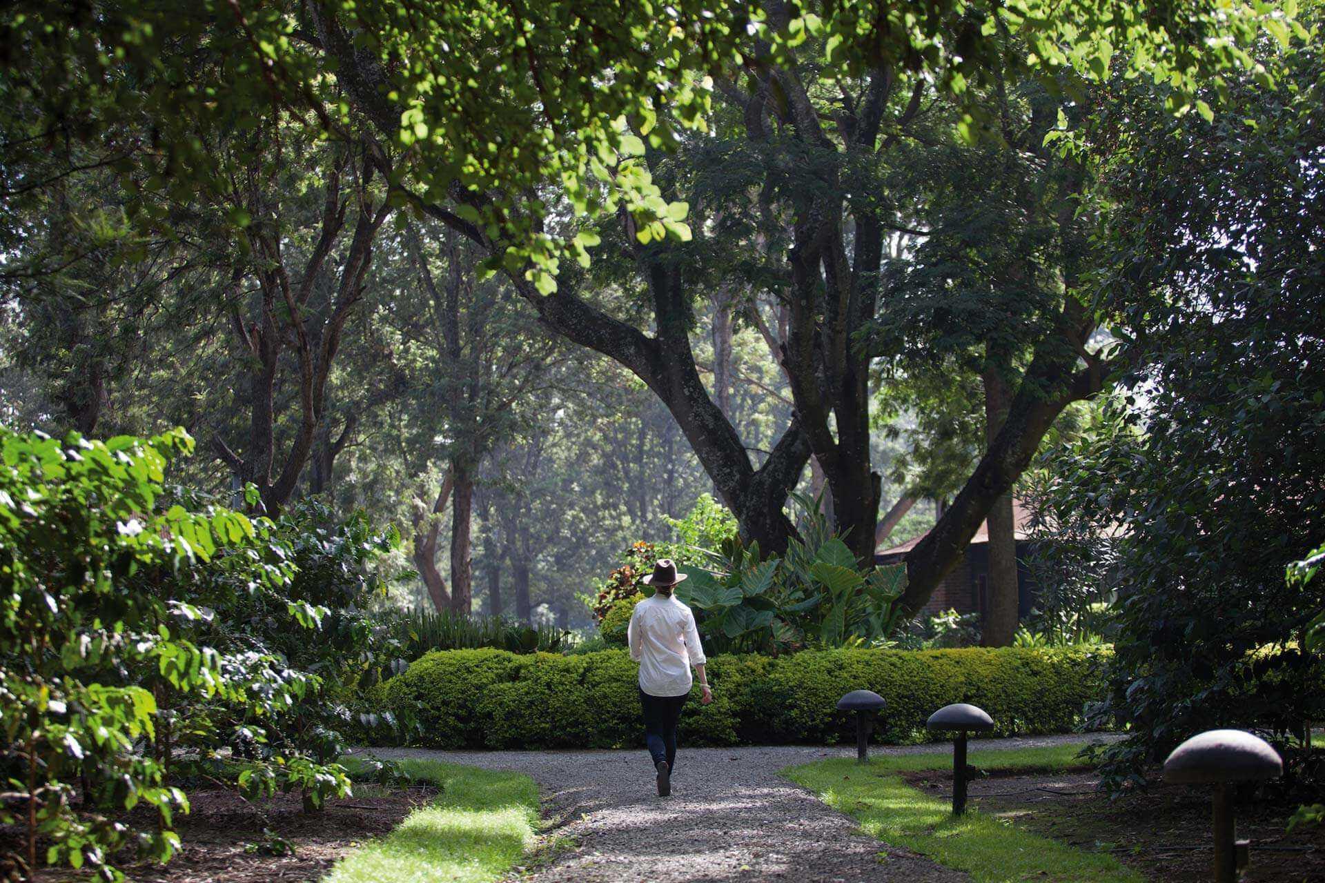 Arusha Coffee Lodge by Elewana Garten