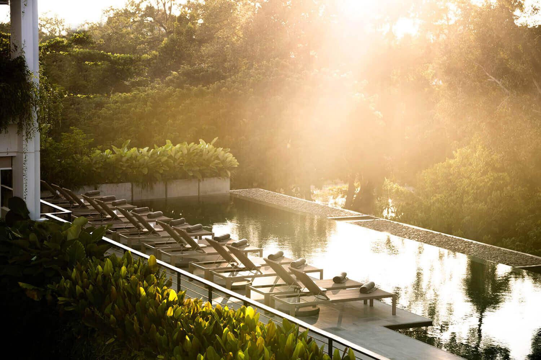 Treeline Urban Resort Pool
