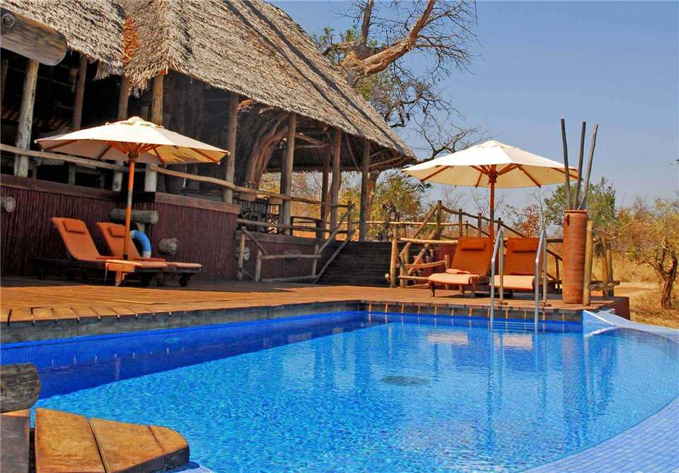 Tarangire Treetops Pool