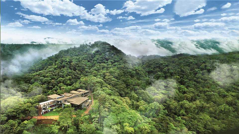 Ecuador - der Nebelwald bei Mindo
