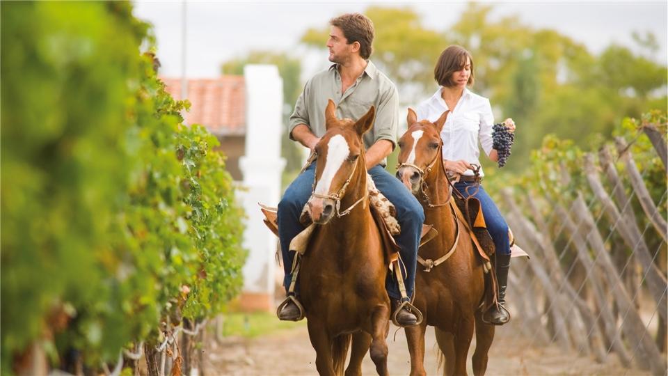 Suedamerika - Reitausflug zwischen Weinplantagen