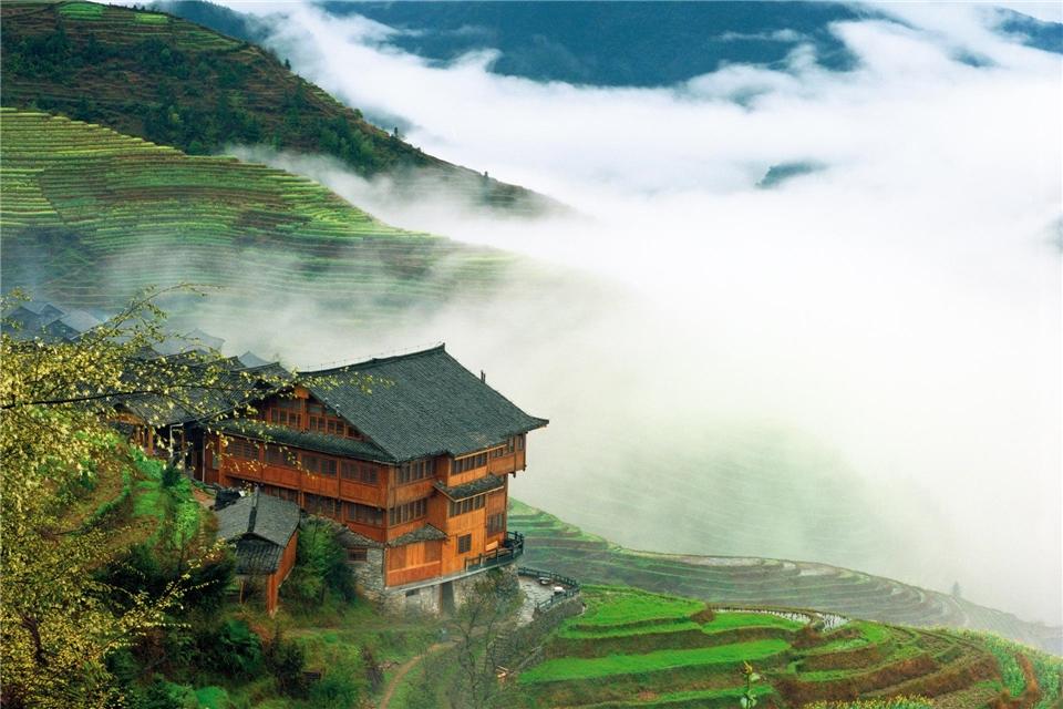 China - Haus im Reisfeld