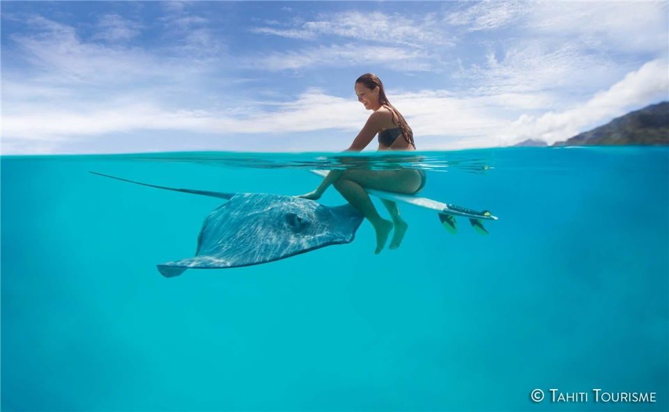 Portrait eines Inselparadieses Schwimmen mit Rochen bei Moorea