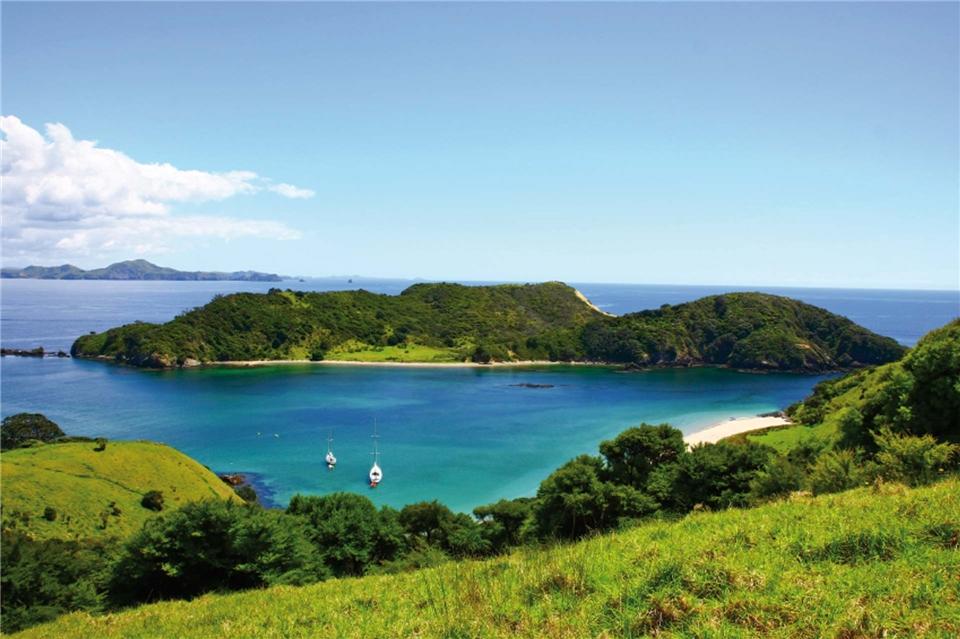 Neuseeland - Gruene Natur in Neuseeland mit Blick auf den Ozean