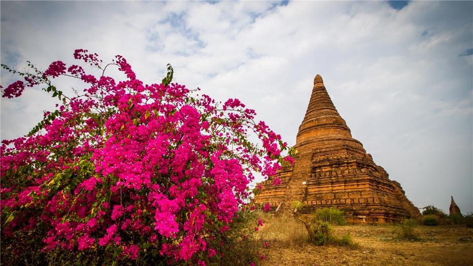 Licht Gold und Blüten Tempelanlage Shwegugyi