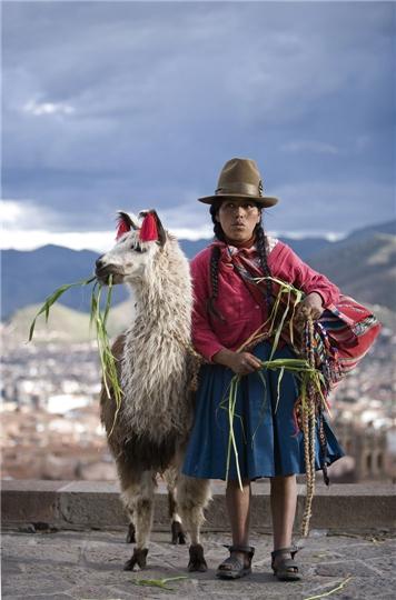 Suedamerika - Peruanerin mit Ihrem Apalca in Peru