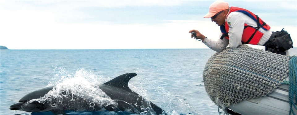 Galapagos Ecuadors Arche Noah Delfin und ein Schlauchboot